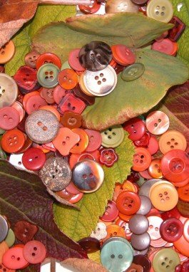 Where to buy packs of coordinating buttons