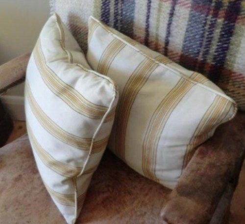 Scatter cushion project